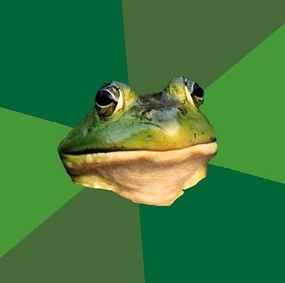 Популярные интернет мемы - Грязнуля Жаба-холостяк